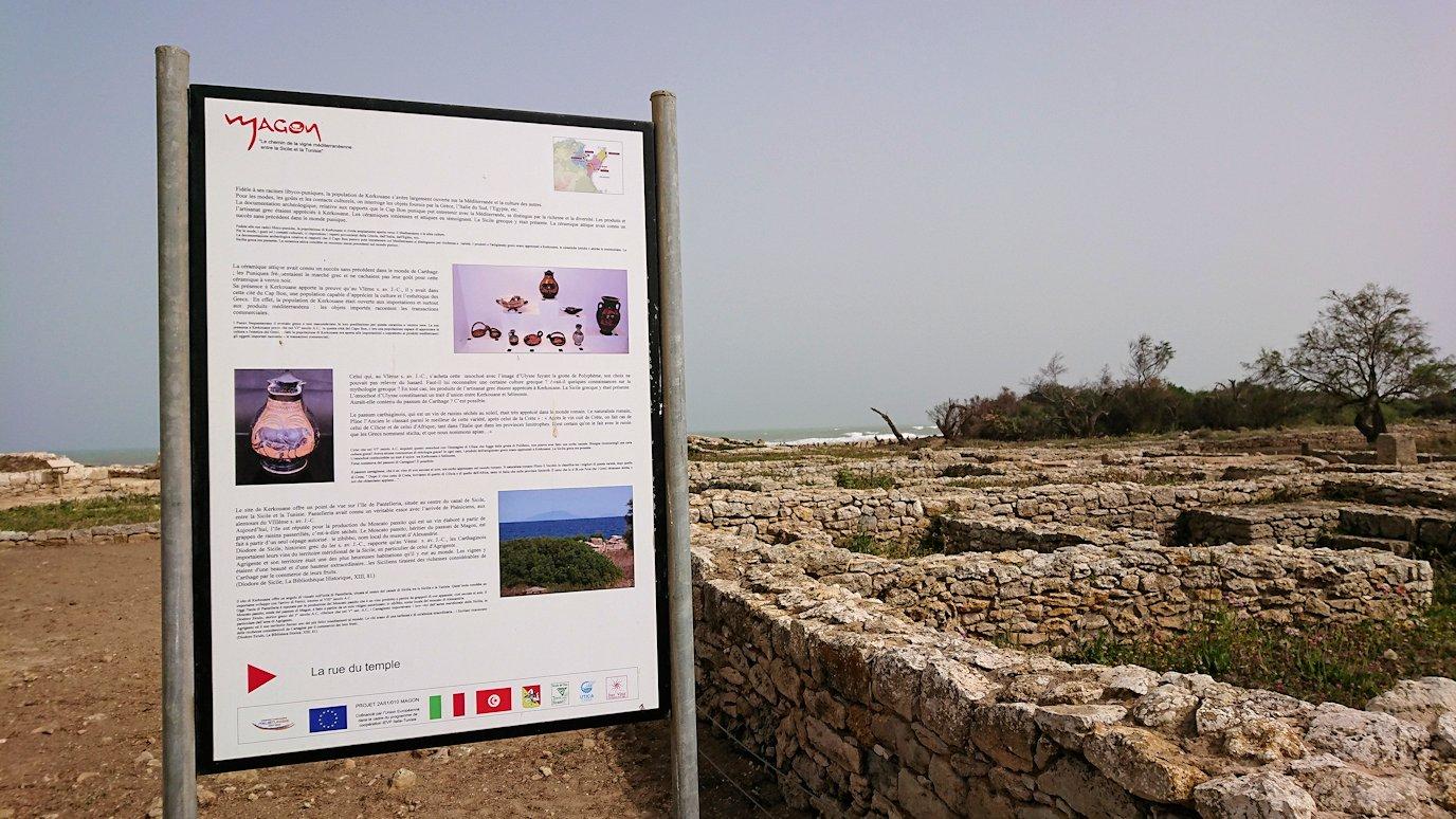 チュニジア:のケルクアン遺跡内を散策する5
