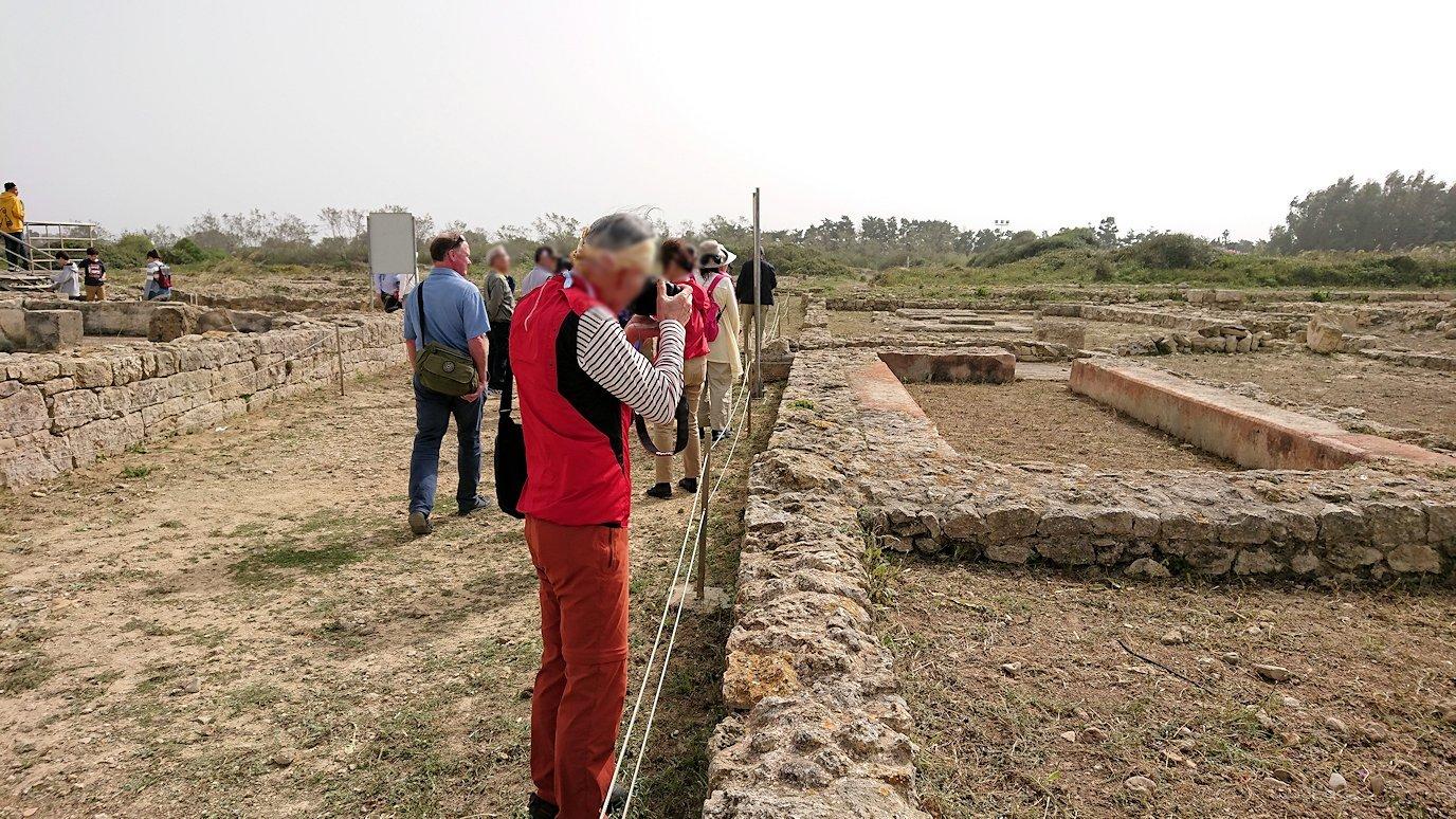 チュニジア:のケルクアン遺跡で見かけたものは?6