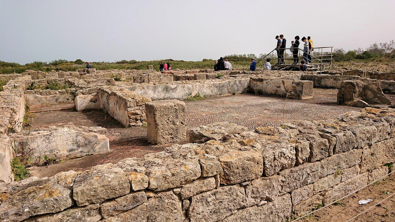 チュニジア:のケルクアン遺跡で見かけたものは?7