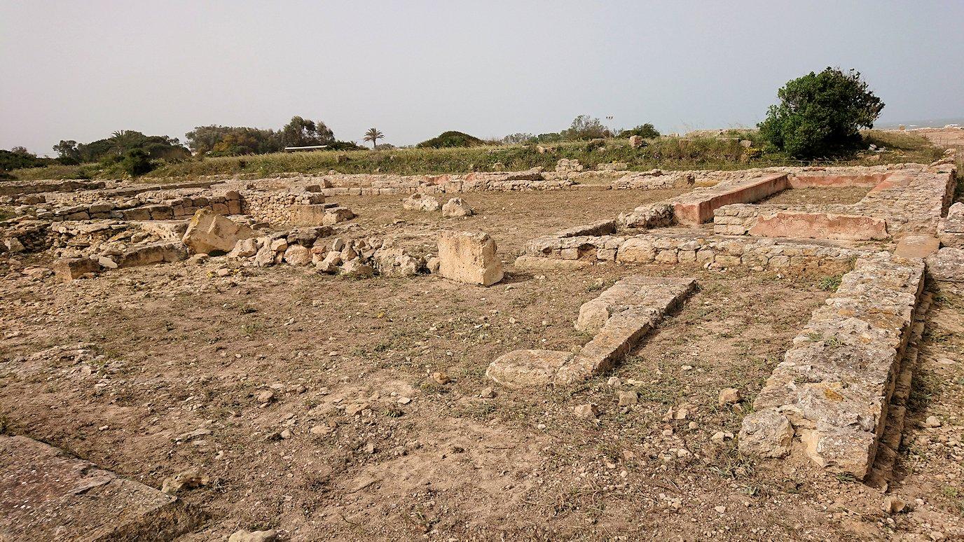 チュニジア:のケルクアン遺跡はまだまだ健在