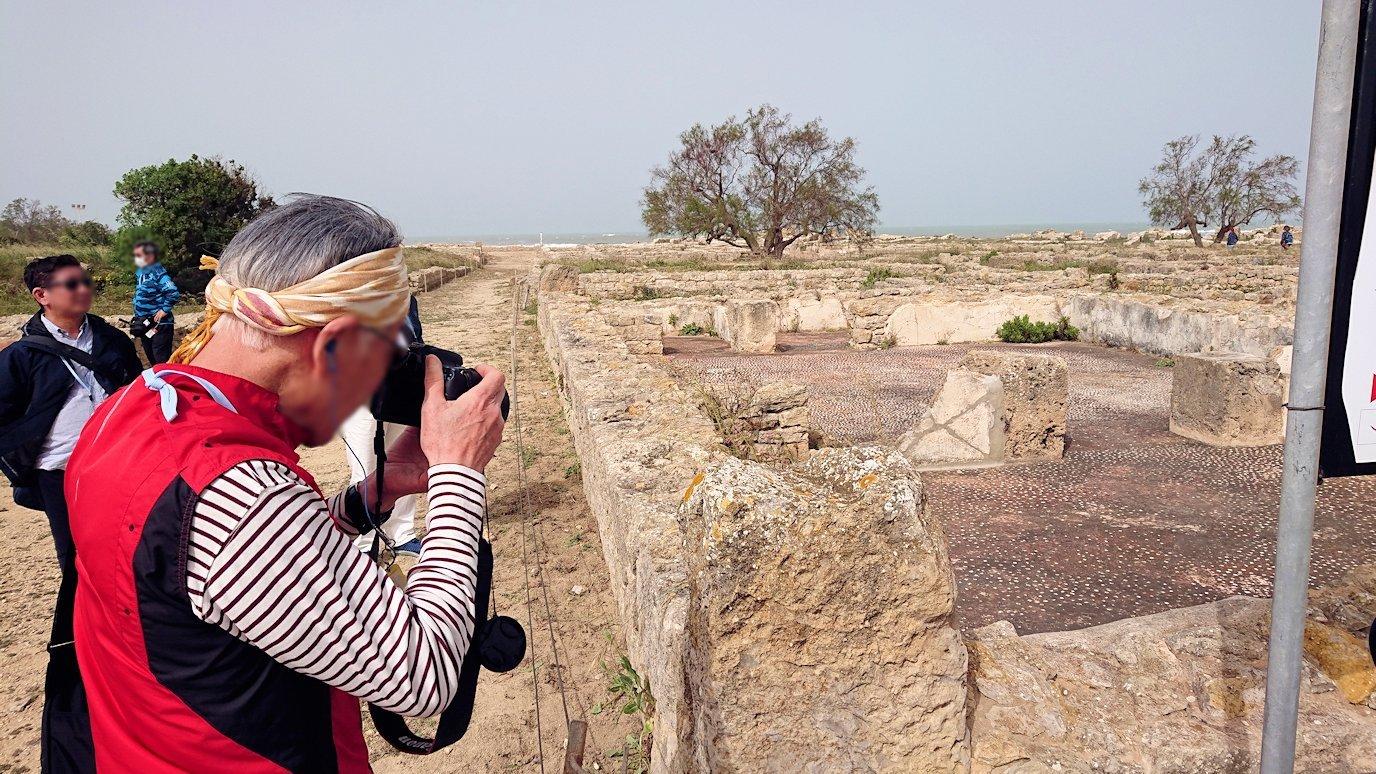 チュニジア:のケルクアン遺跡はまだまだ健在1