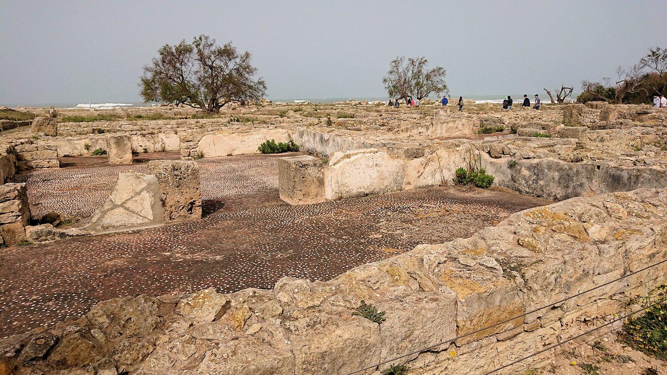 チュニジア:のケルクアン遺跡はまだまだ健在3