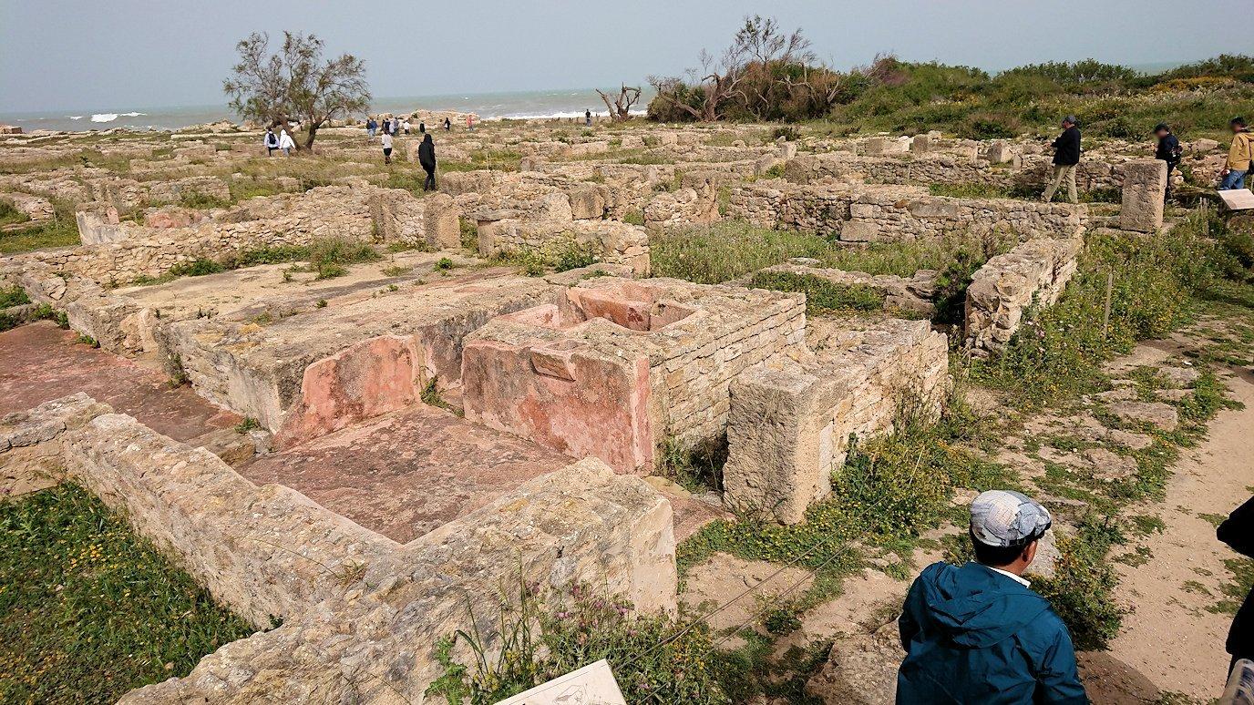 チュニジア:のケルクアン遺跡はまだまだ健在8
