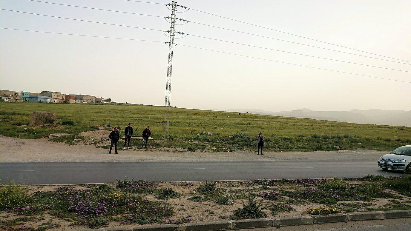 チュニジア:のケルクアン遺跡の見学が終了し移動する5