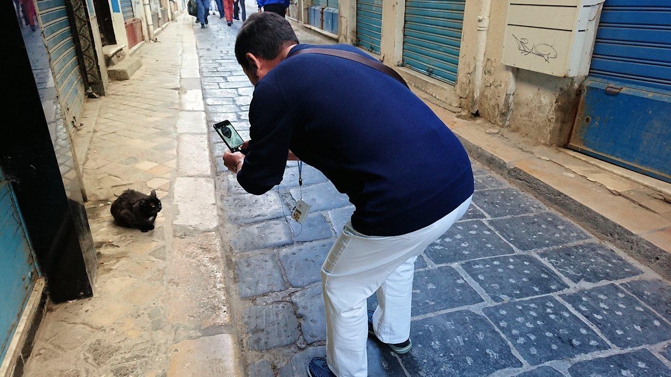 チュニジア:チュニスのメディナのメイン通りを進む6