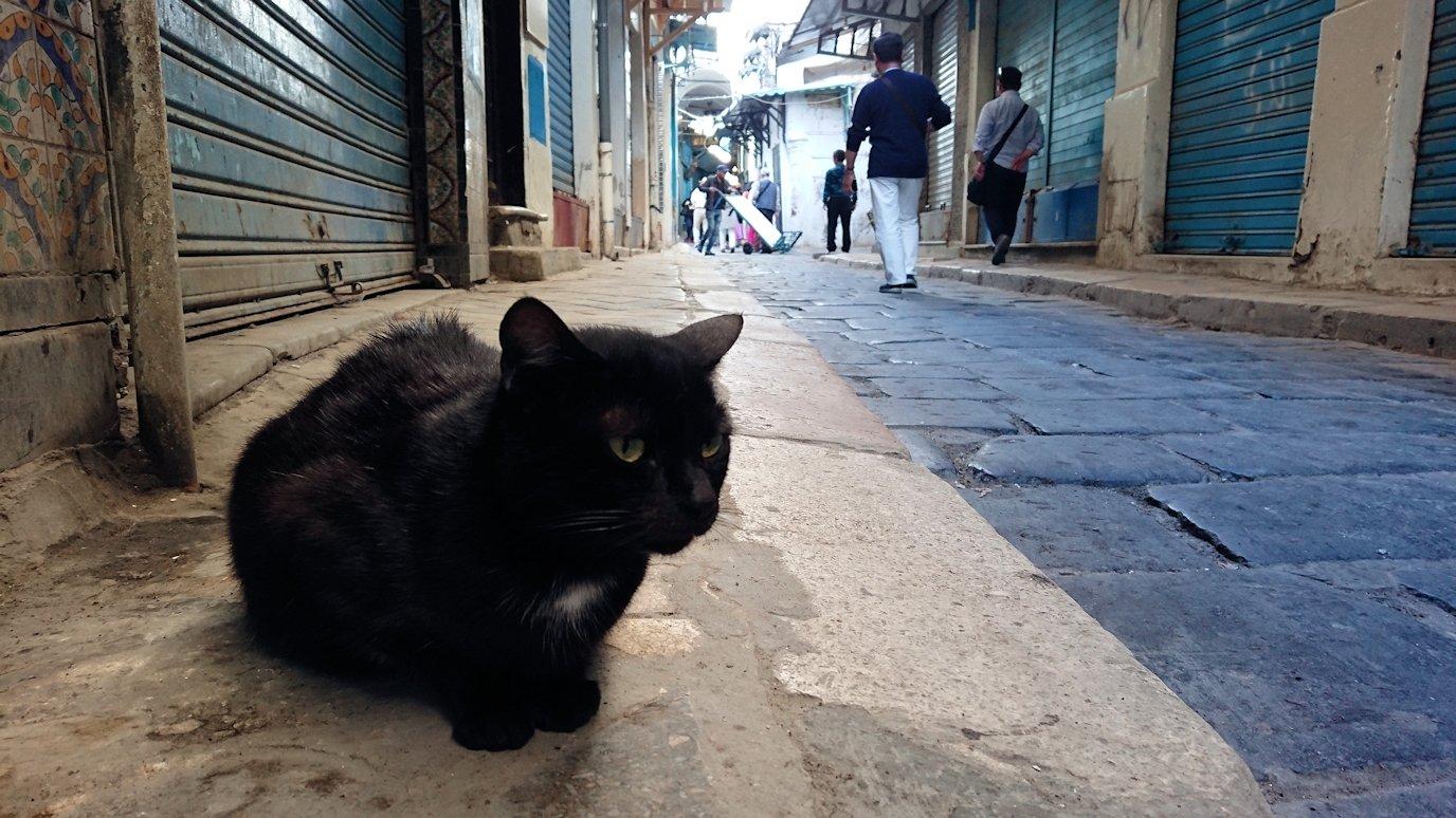 チュニジア:チュニスのメディナのメイン通りを進む9