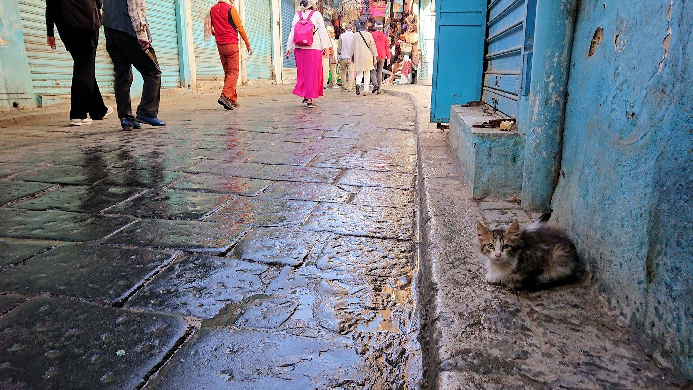 チュニジア:チュニスのメディナのメイン通りを進みながら写真を撮る8