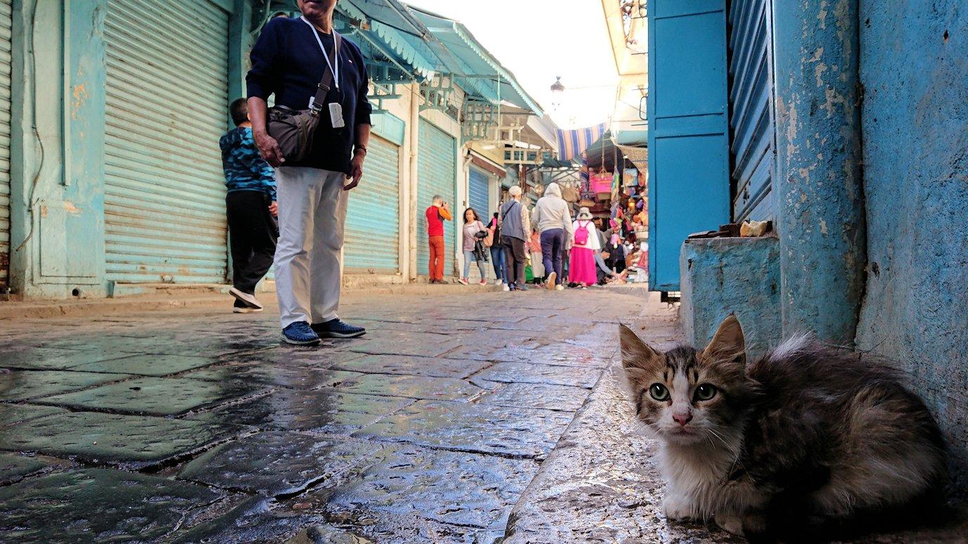 チュニジア:チュニスのメディナのメイン通りを進みながら写真を撮る9