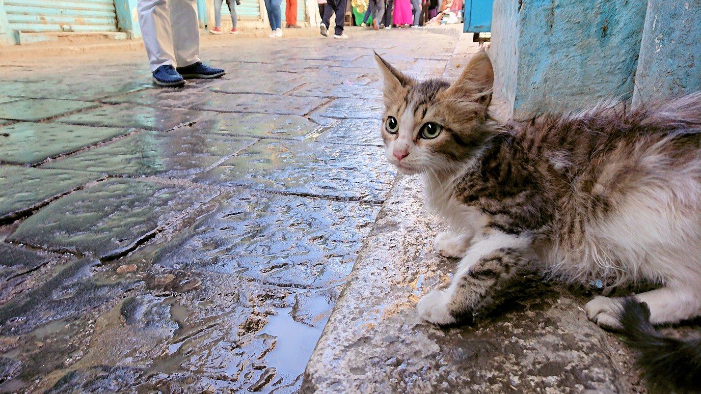 チュニジア:チュニスのメディナのメイン通りを進みながらグランドモスクに