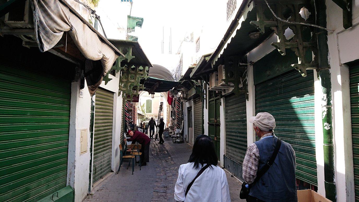チュニジア:チュニスのメディナのメイン通りを進みながらグランドモスク近くの猫ちゃん8