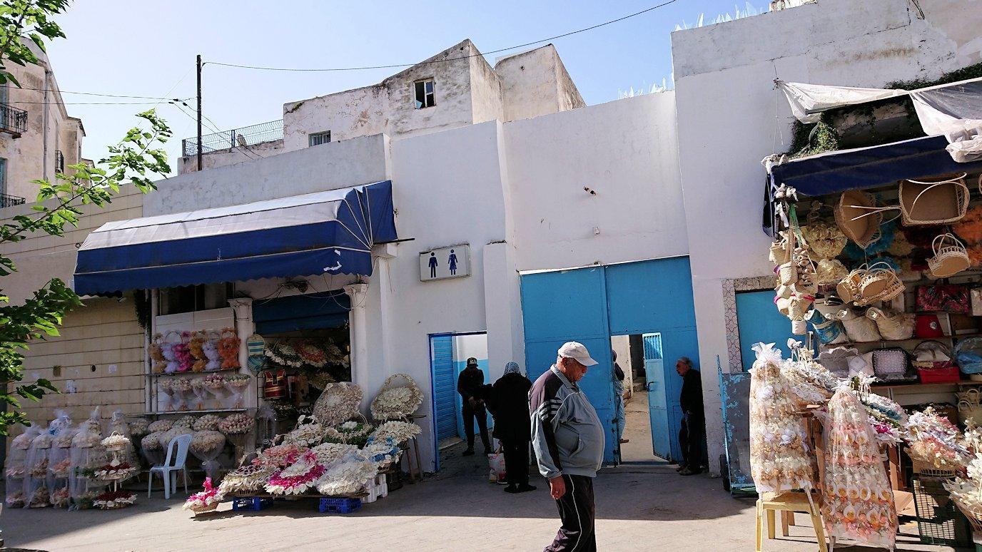 チュニジア:チュニスのメディナの猫ちゃんは・・2