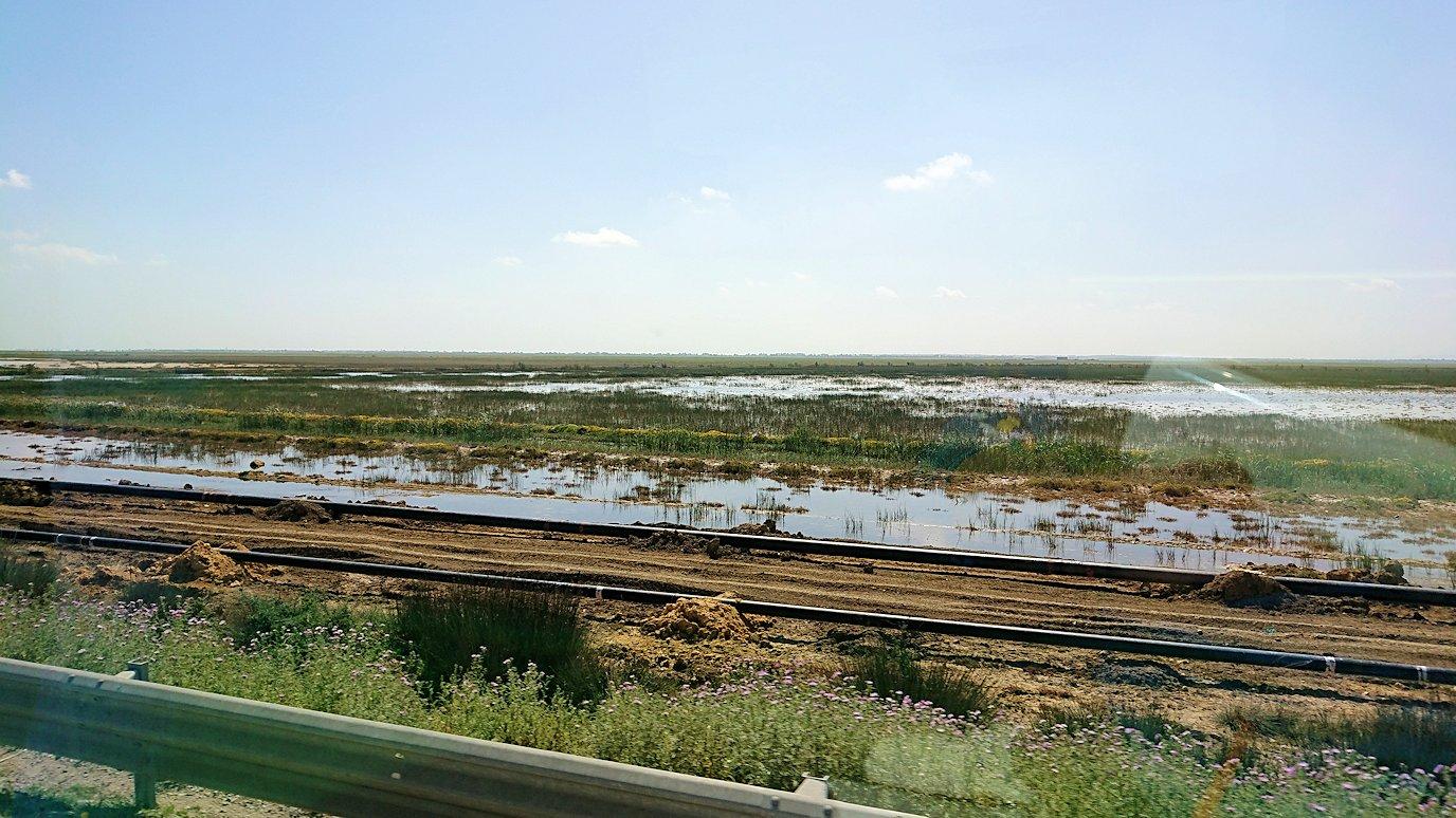 チュニジア:チュニスからイシュケウル国立公園へバスで移動する8