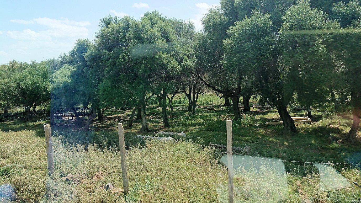 チュニジア:イシュケウル国立公園の敷地内に入る1