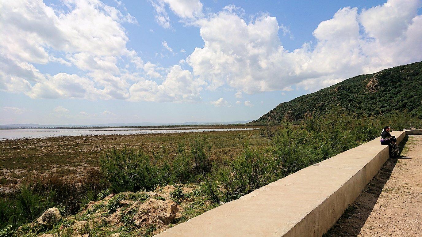チュニジア:イシュケウル国立公園の敷地内に入る8