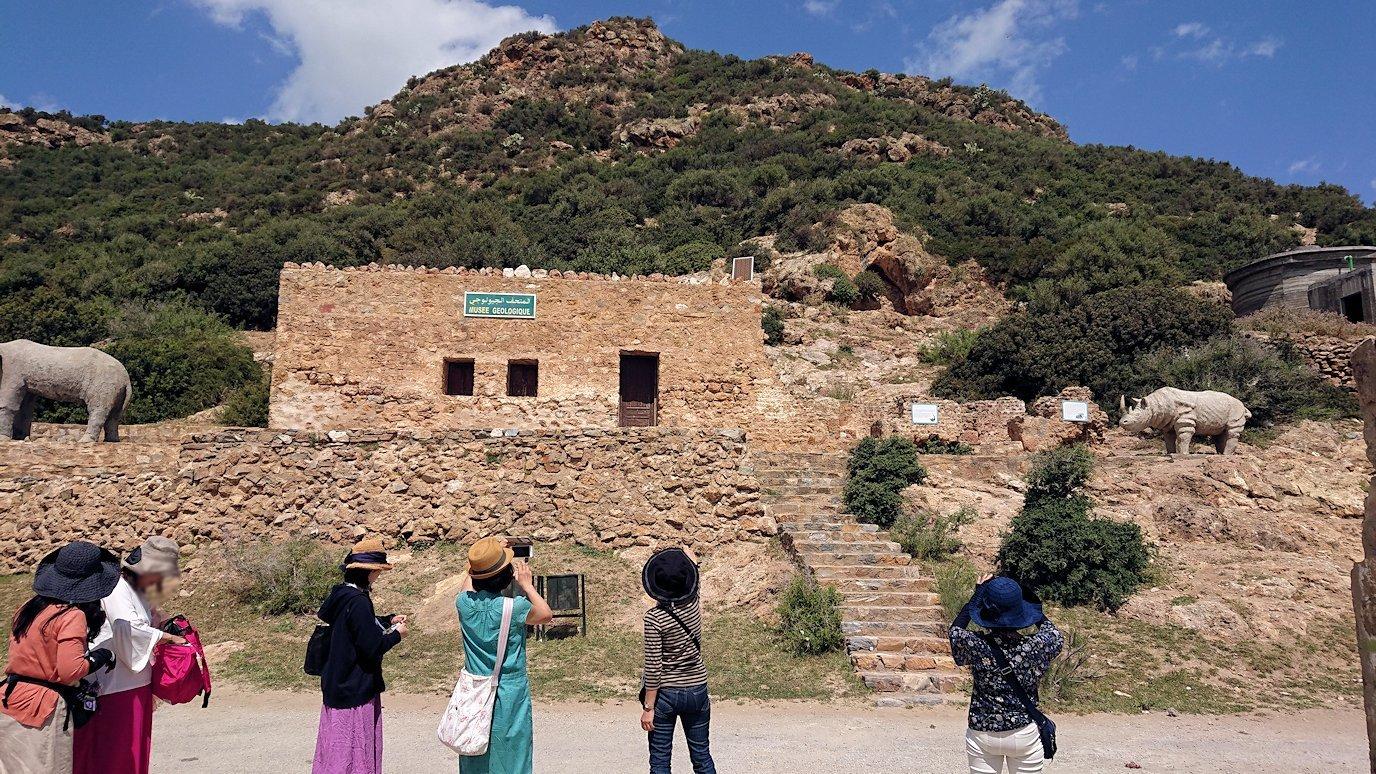 チュニジア:イシュケウル国立公園の敷地内に入る9
