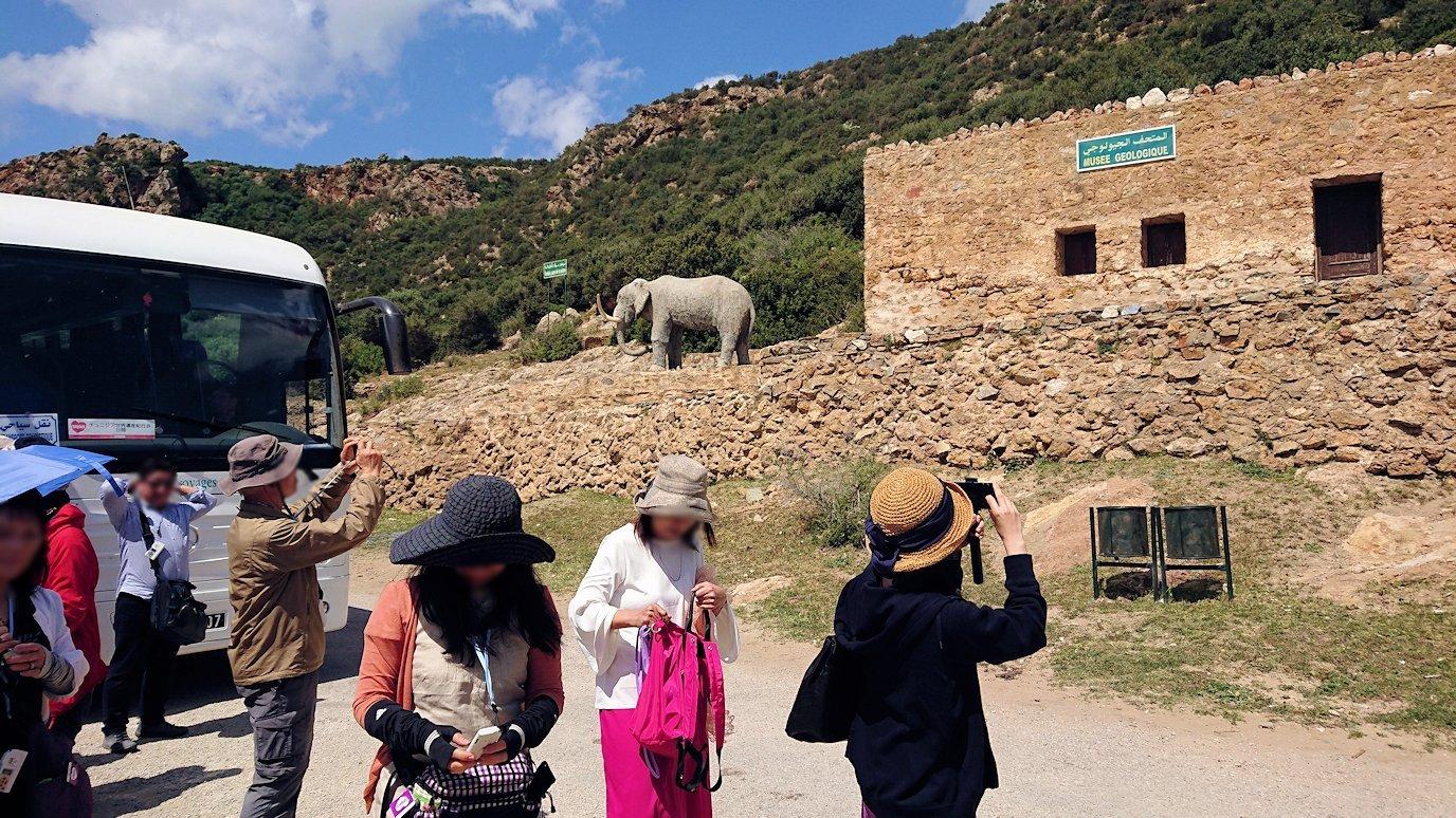 チュニジア:イシュケウル国立公園の階段を登って行きます
