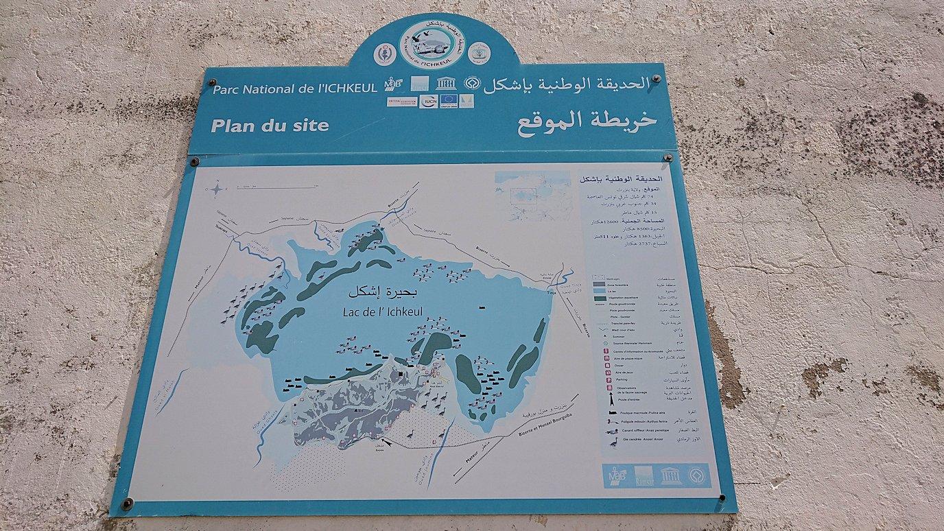チュニジア:イシュケウル国立公園の階段を登って行きます3