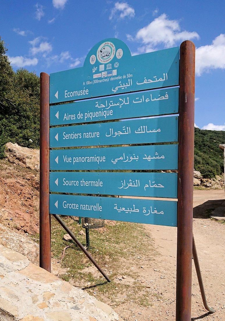 チュニジア:イシュケウル国立公園の階段を登って行きます5