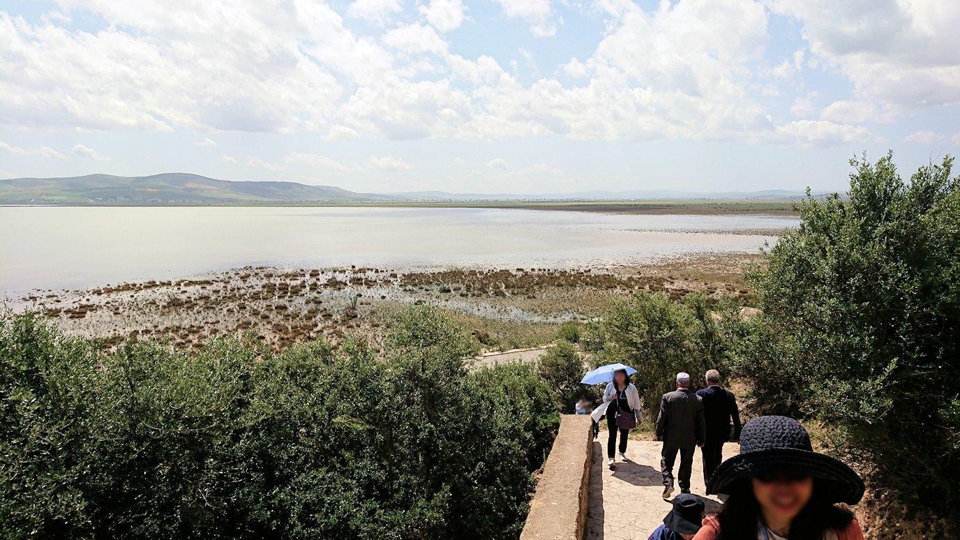 チュニジア:イシュケウル国立公園の階段を登って行きます7