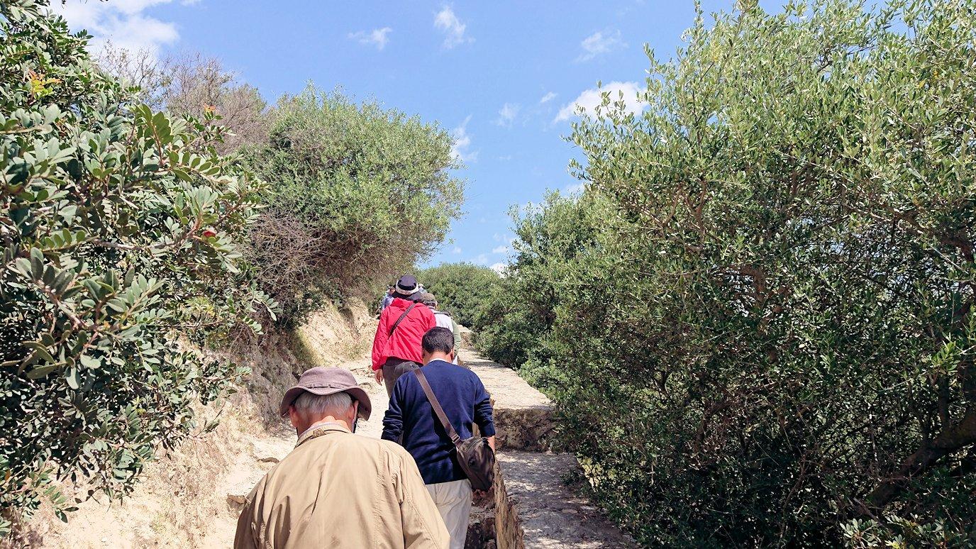 チュニジア:イシュケウル国立公園の階段を登ってなんとか頂上に辿り着く