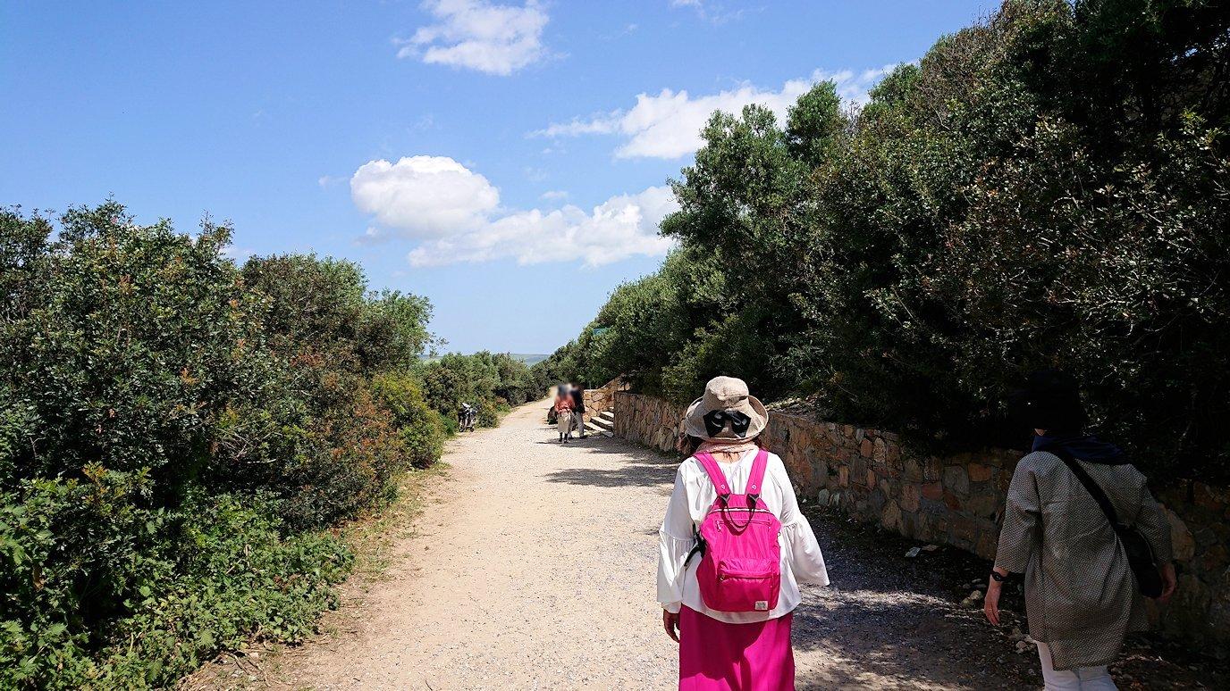 チュニジア:イシュケウル国立公園の階段を登ってなんとか頂上に辿り着く4