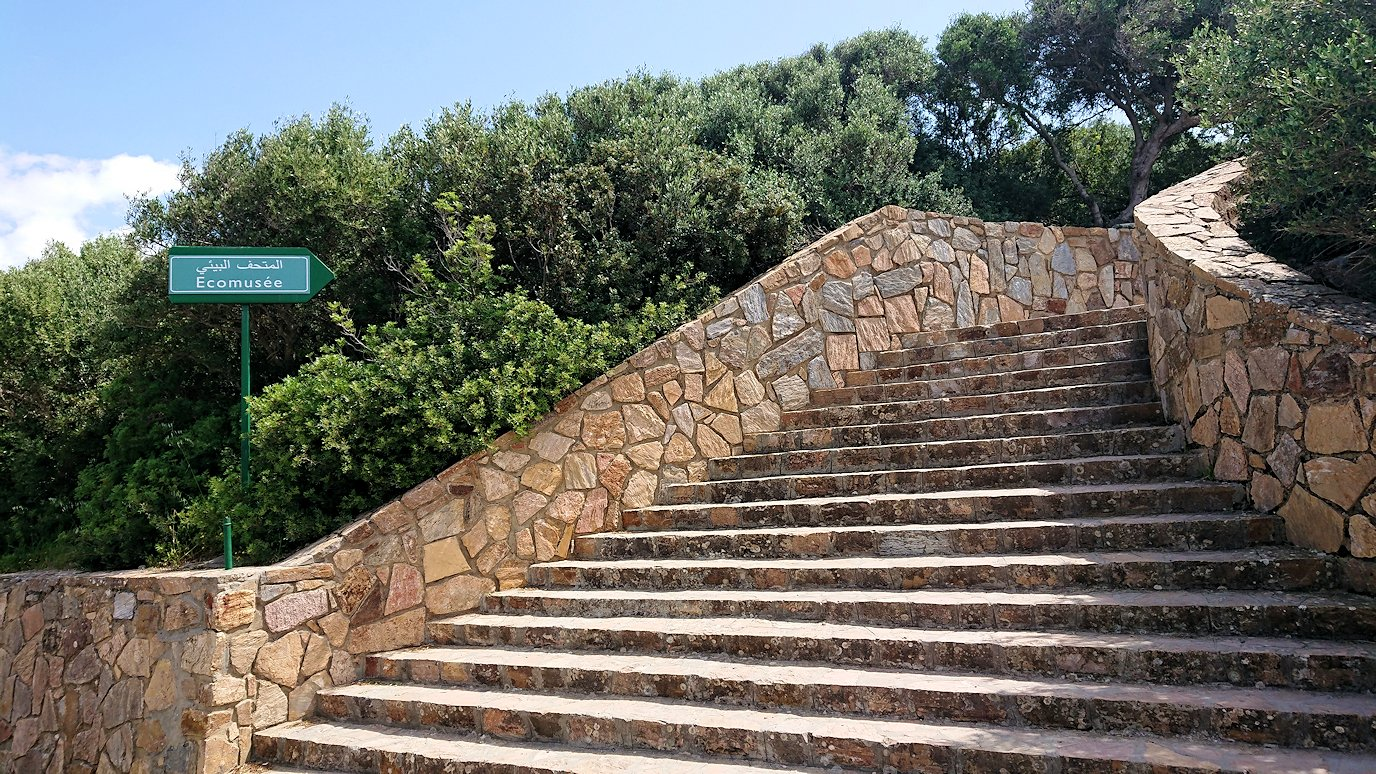 チュニジア:イシュケウル国立公園の階段を登ってなんとか頂上に辿り着く5