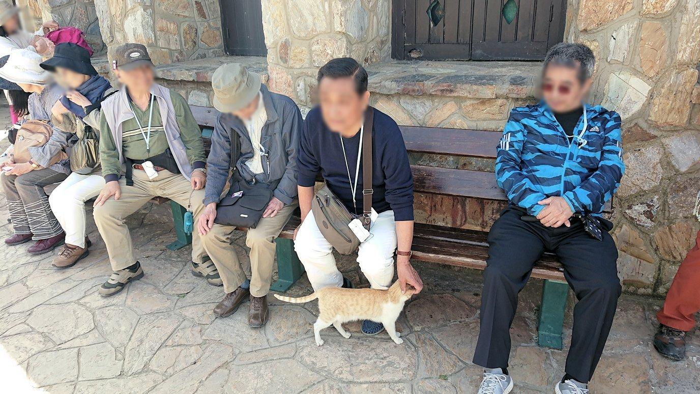チュニジア:イシュケウル国立公園の頂上の自然博物館にて1