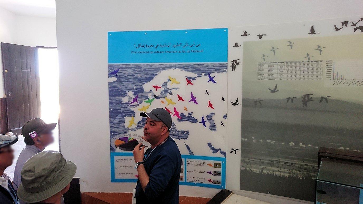 チュニジア:イシュケウル国立公園の頂上の自然博物館にて9