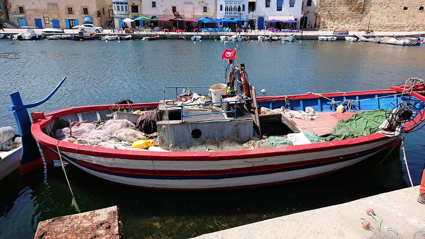 チュニジア:ビゼルトの街で見かけた猫2