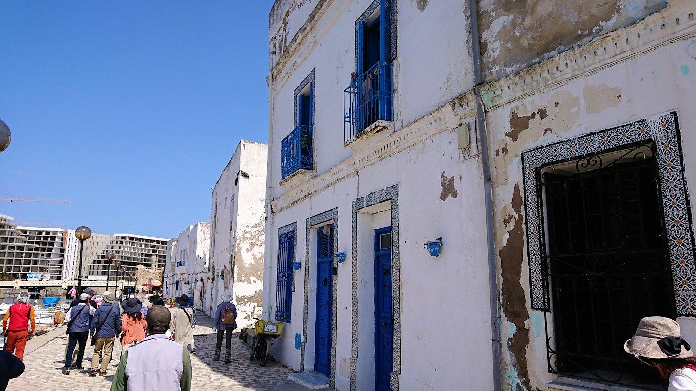 チュニジア:ビゼルトの街で見かけた猫と遊ぶ1