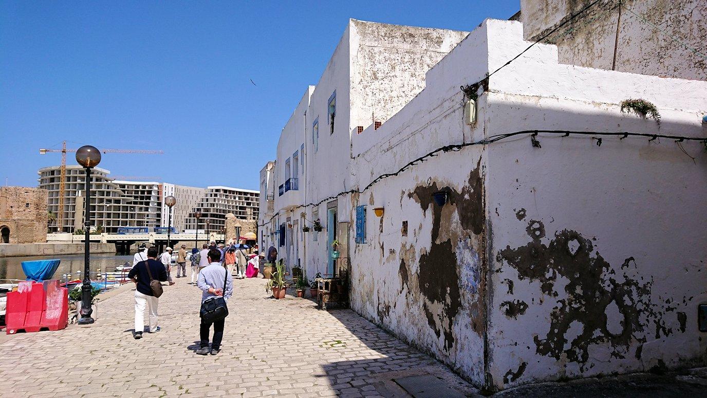 チュニジア:ビゼルトの街で見かけた猫と遊ぶ5