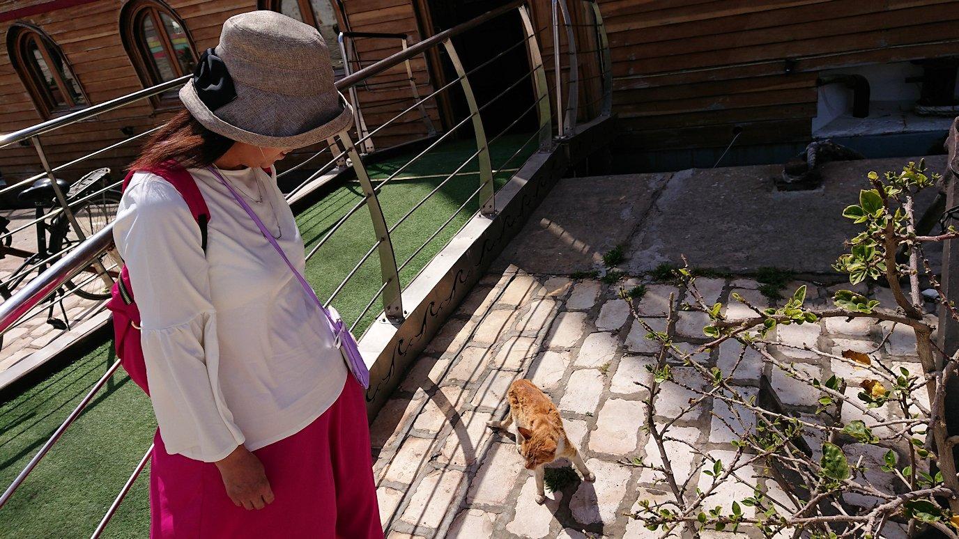 チュニジア:ビゼルトの街で旧港付近を回る8