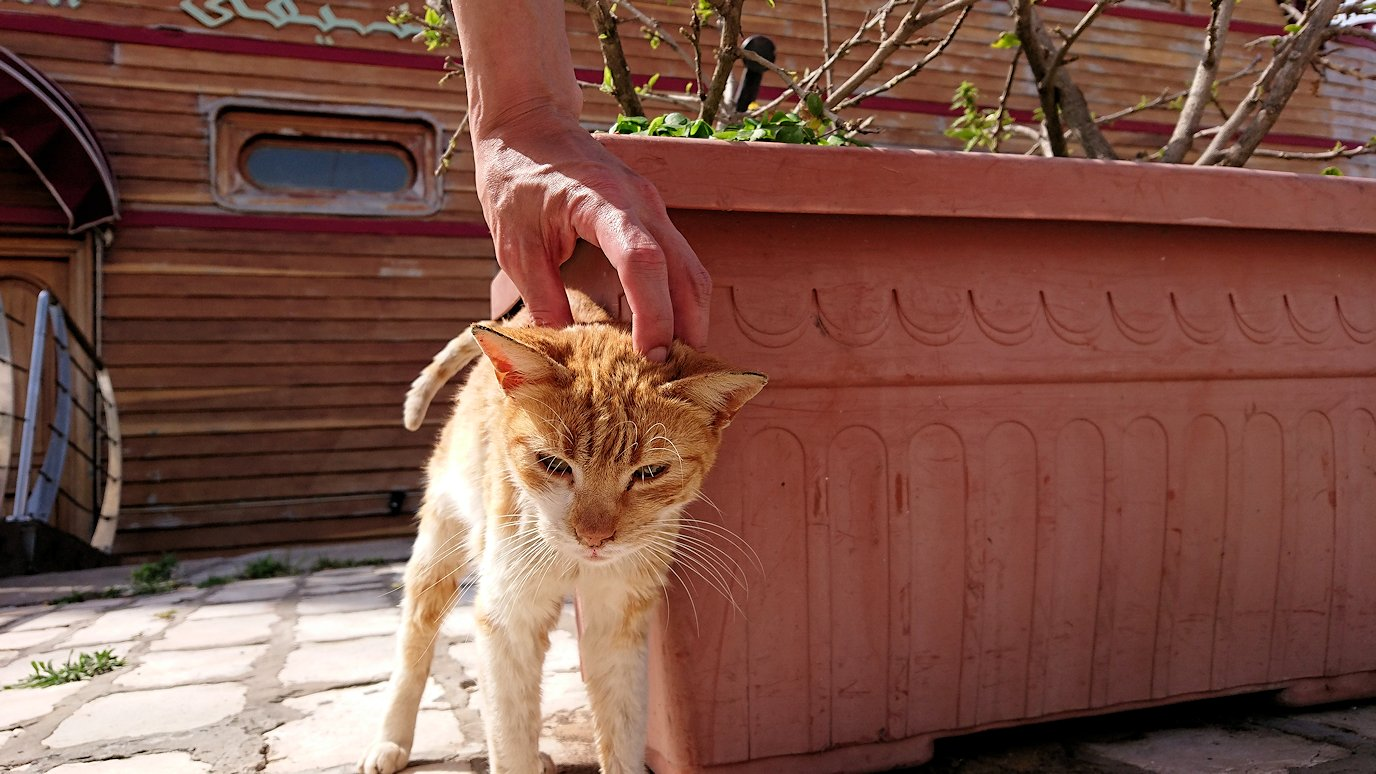チュニジア:ビゼルトの街を満喫しバスに乗り込む