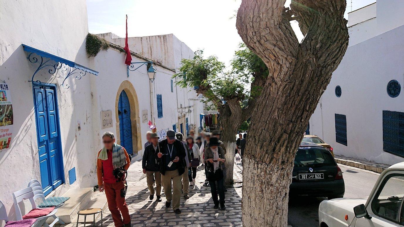 チュニジア:シディ・ブ・サイドの中心へ向かう坂を進む7