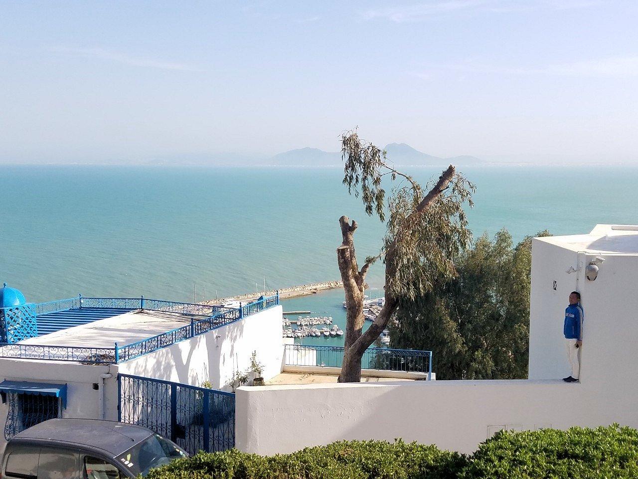 チュニジア:シディ・ブ・サイドの街を進んで絶景ポイントで写真撮影に夢中7