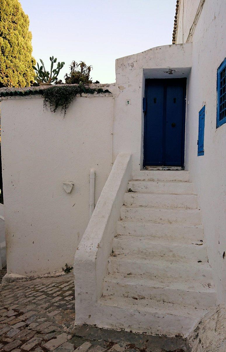 チュニジア:シディ・ブ・サイドで海岸に降りる道を進む3