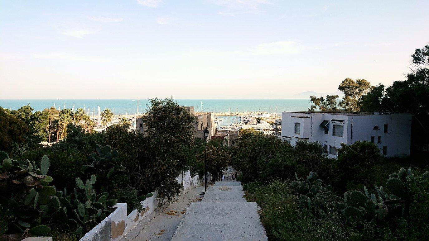 チュニジア:シディ・ブ・サイドで海岸に降りる道を進む6