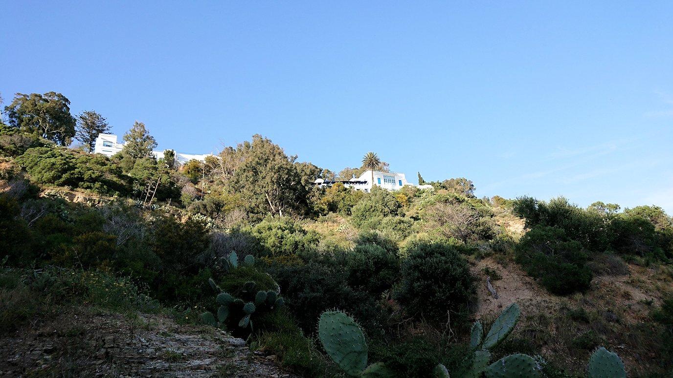 チュニジア:シディ・ブ・サイドで海岸に降りる道を進む7