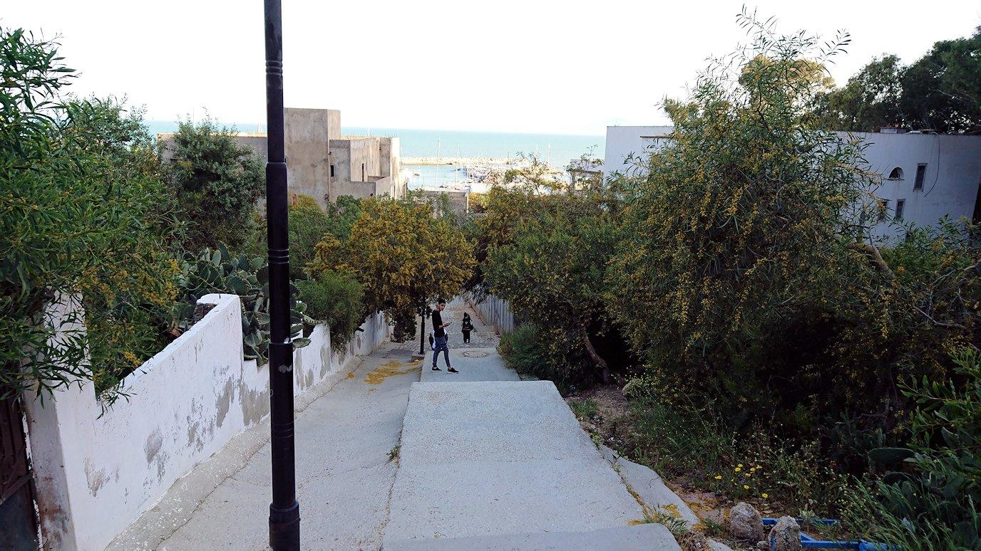 チュニジア:シディ・ブ・サイドで海岸に降りる道を進む8