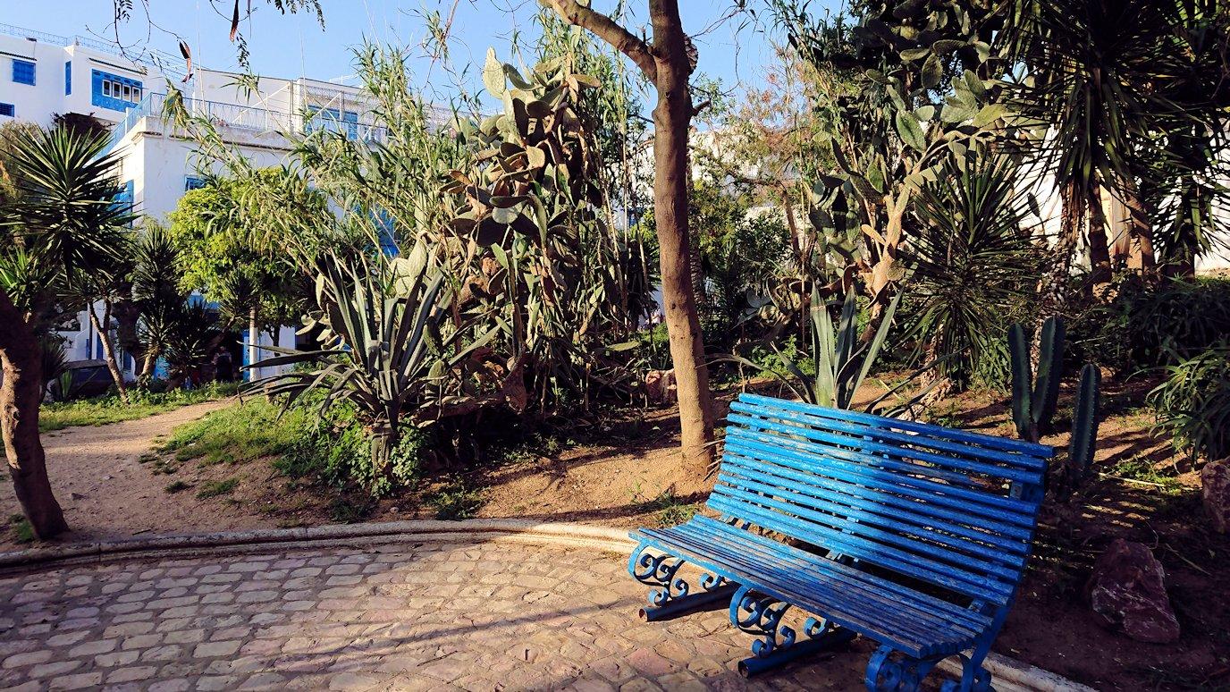 チュニジア:シディ・ブ・サイドで最後まで散策してみる8