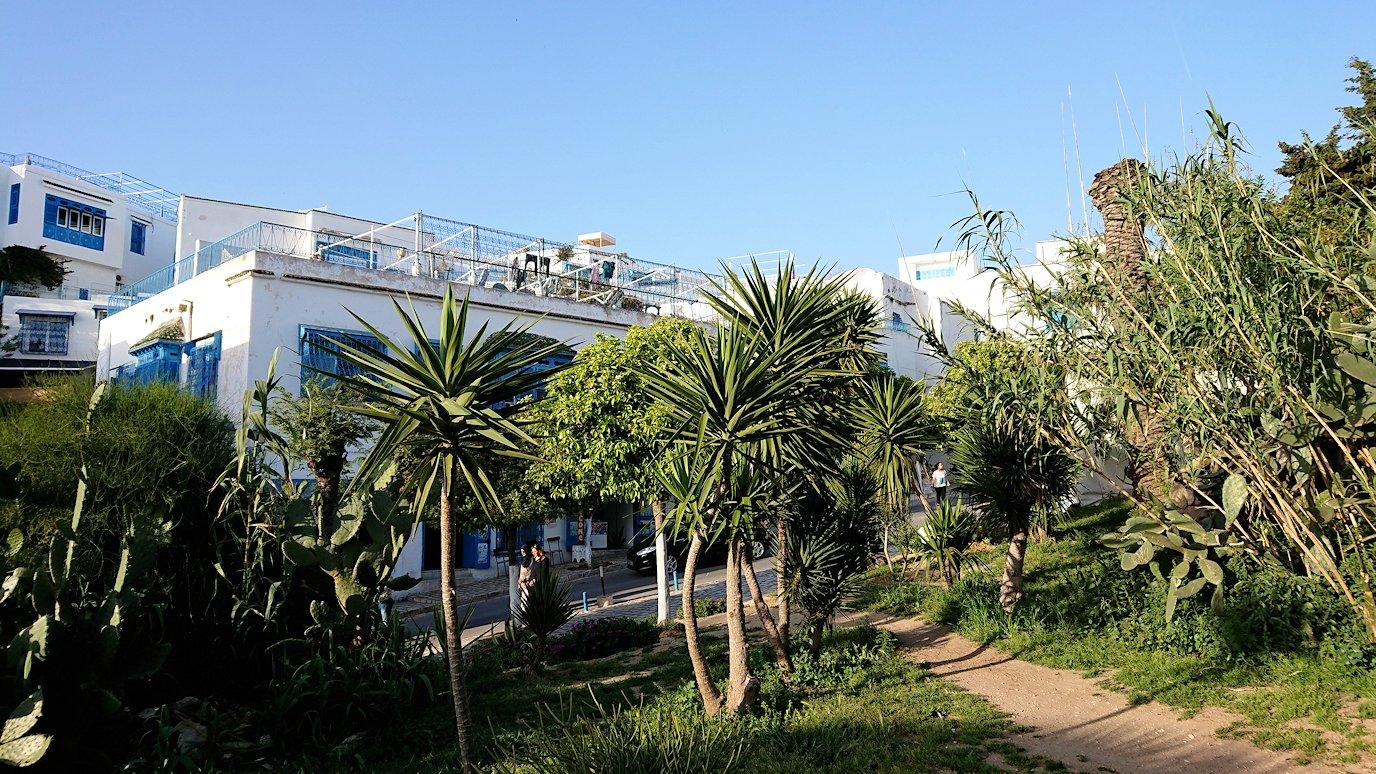 チュニジア:シディ・ブ・サイドでそろそろバスに戻る1