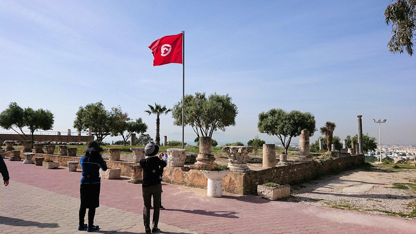 チュニジア:カルタゴ遺跡のビュルサの丘から観光開始6