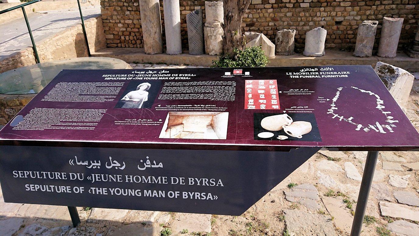 チュニジア:カルタゴ遺跡のビュルサの丘の中に進んで行く1