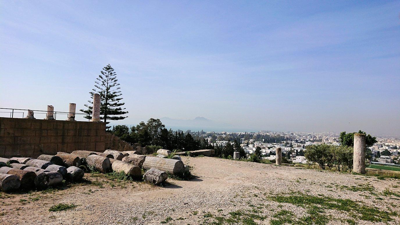 チュニジア:カルタゴ遺跡のビュルサの丘の中に進んで行く3