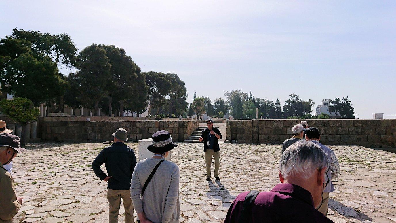 チュニジア:カルタゴ遺跡のビュルサの丘の中に進んで行く6