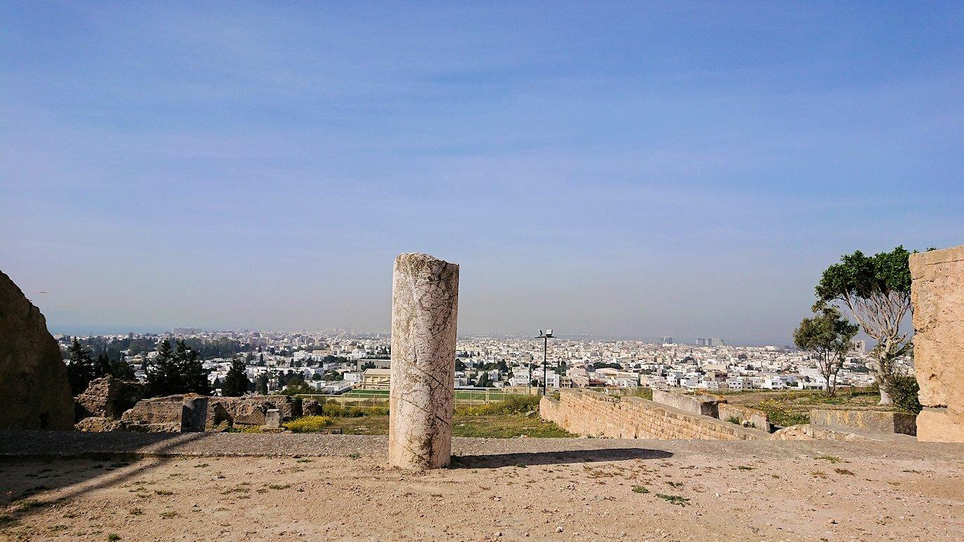 チュニジア:カルタゴ遺跡のビュルサの丘の中に進んで行く7