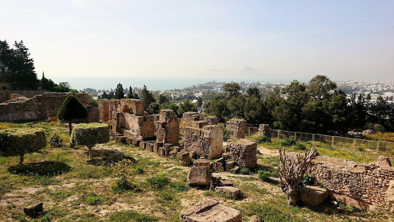チュニジア:カルタゴ遺跡のビュルサの丘で見学3