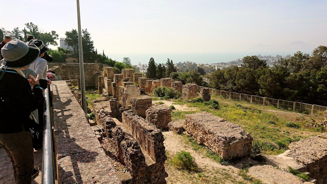 チュニジア:カルタゴ遺跡のビュルサの丘で見学6
