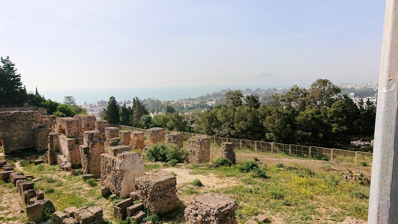チュニジア:カルタゴ遺跡のビュルサの丘で見学9