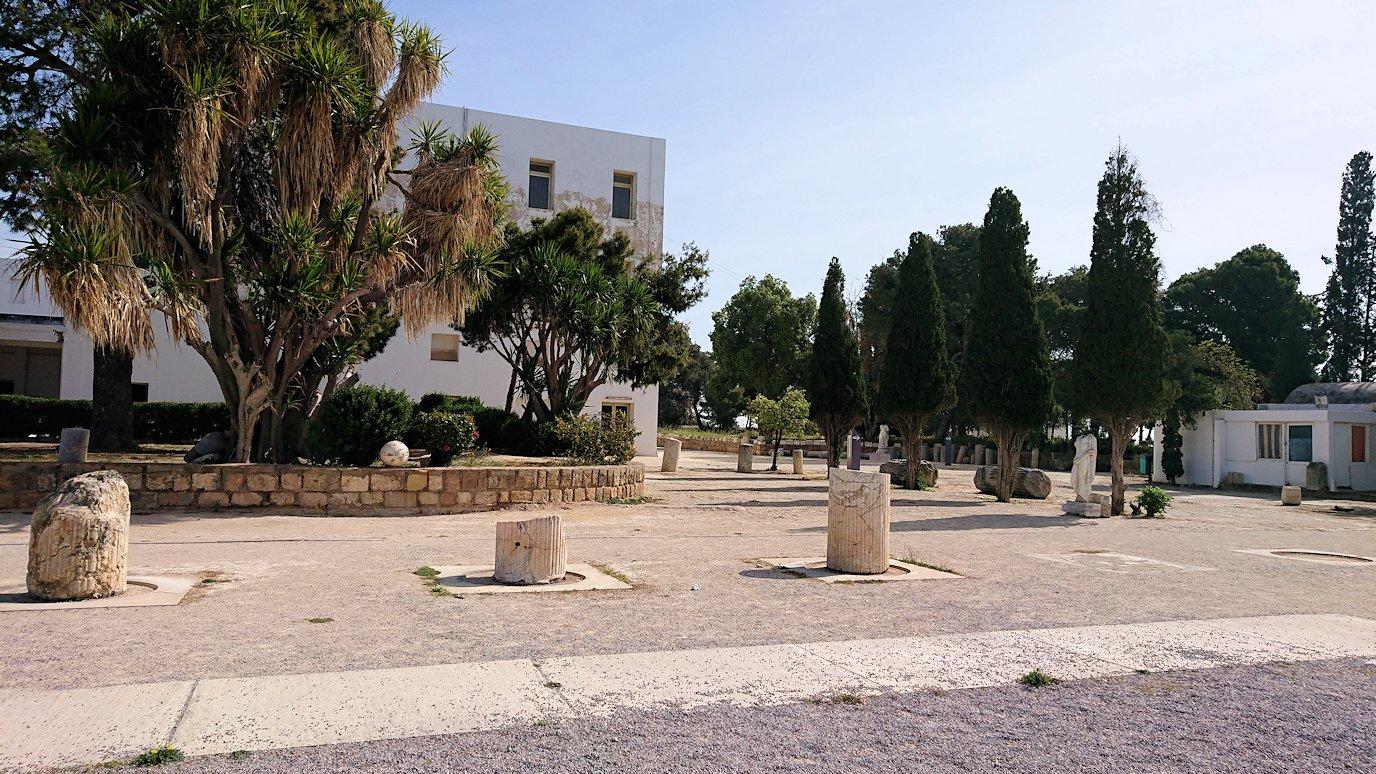チュニジア:カルタゴ遺跡のビュルサの丘を堪能する6